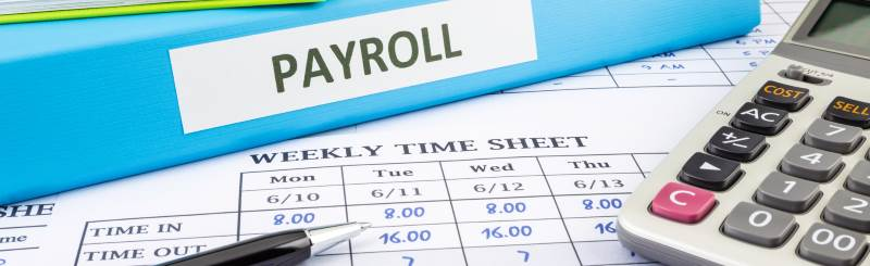 Things to Look For in Web-Based Payroll Services Software